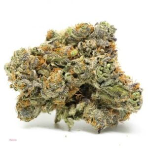 Gelato 33 Strain Marijuana Information %%sep%% Buy Gelato 33 %%sep%% %%sitename%%