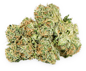 Banana OG Cannabis Strain
